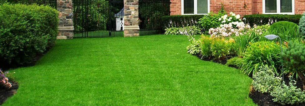 Green Machine Professional Lawn Care | Serving Northeastern PA.