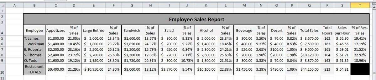 Server Sales Performance Report and Analysis: Microsoft Excel 2010 ...