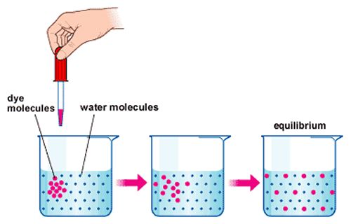 Diffusion, Active Transport and Osmosis: A* understanding for ...