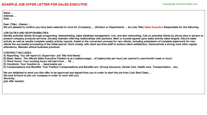 Sales Executive Offer Letter