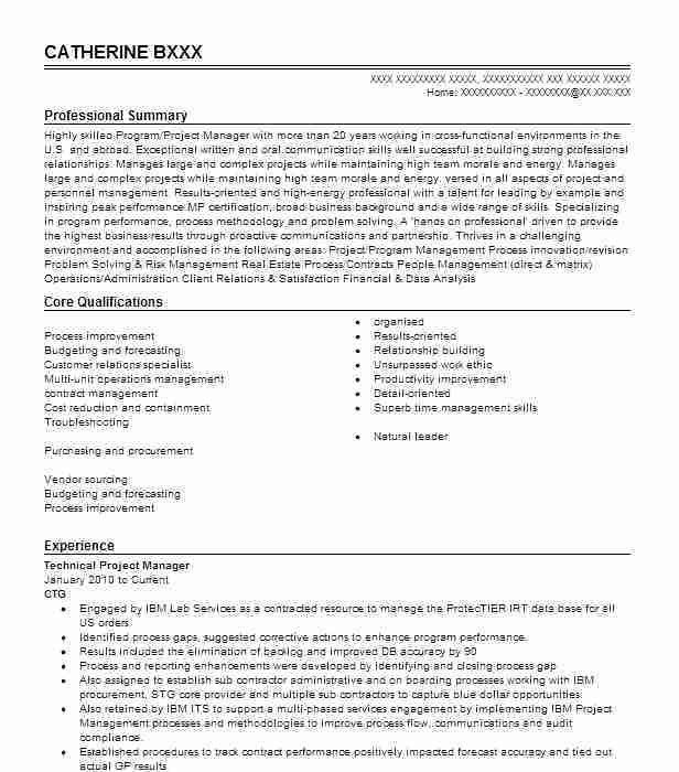 technical project manager resumes