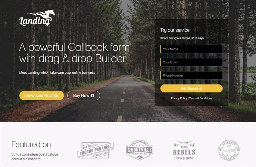 24+ SEO Landing Page Templates | Free & Premium | Creative Template