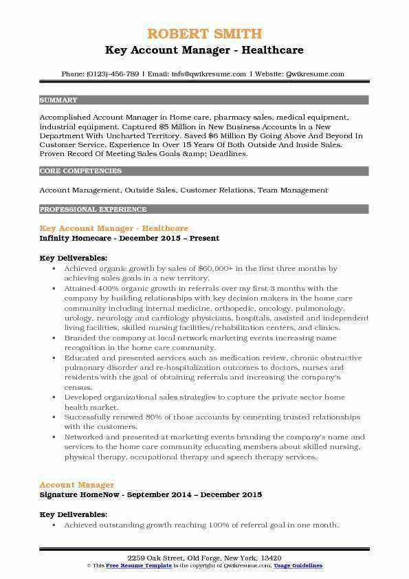Resume Key Account Manager Sample. key account manager application ...