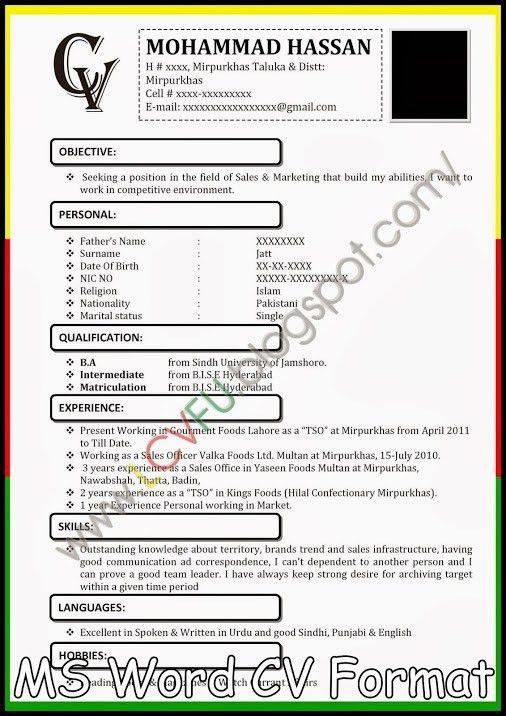 MS Word CV Format, Latest CV Format 2014, New CV Formats, New ...