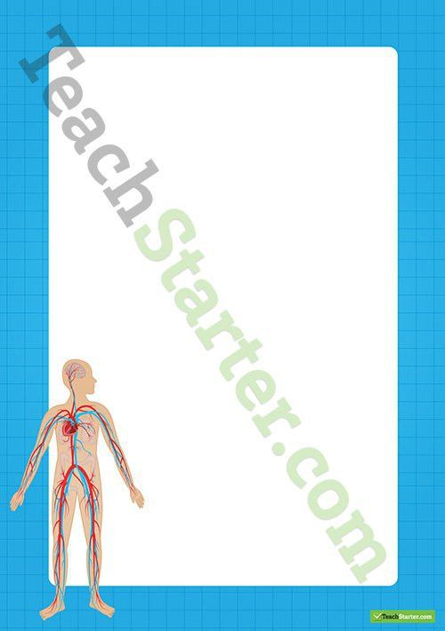 Human Body Circulatory System Border - Word Template Teaching ...