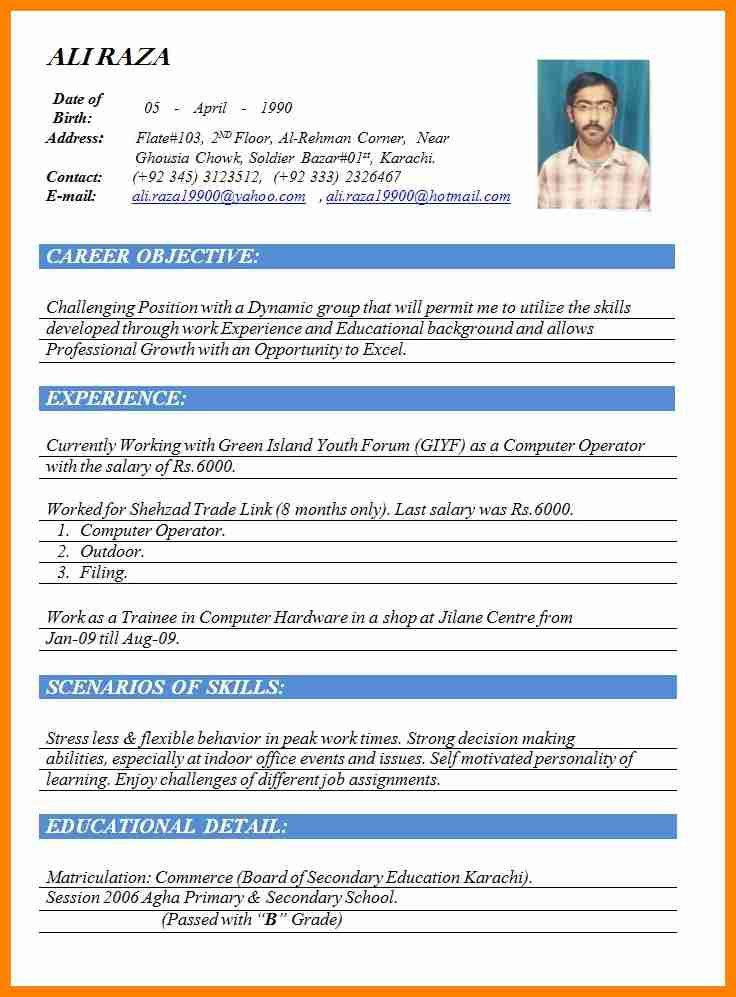 5+ best cv format word document | catering resume