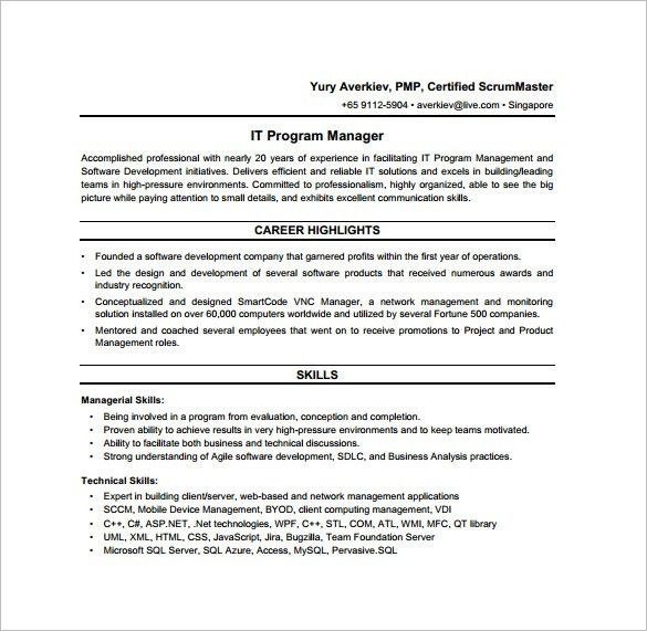 12+ Program Manager Job Description Templates – Free Sample ...