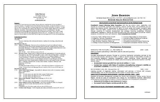 doc547713 sales executive resume example cover letter sample ...