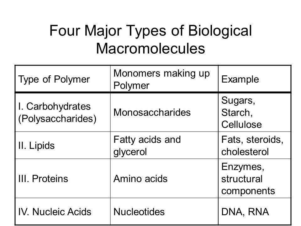 Four Major Types of Biological Macromolecules - ppt video online ...