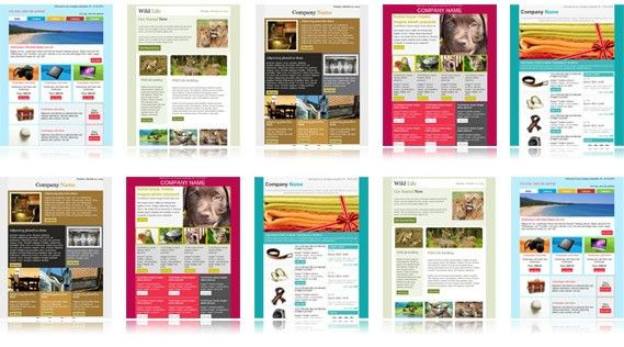 Download free email templates | Email newsletter templates collection