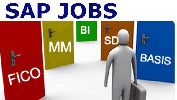 sap fico consultant cover letter sample livecareer. sap fico jobs ...