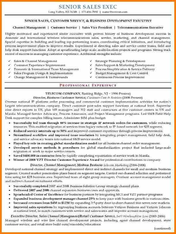 6+ executive resume samples | resume reference