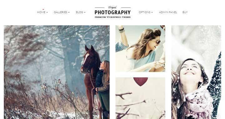 37 Best WordPress Photography Themes of 2015 - Webloggerz.com