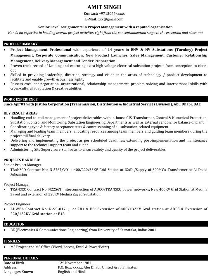 Project Manager Resume Samples | Sample Resume for IT Project ...