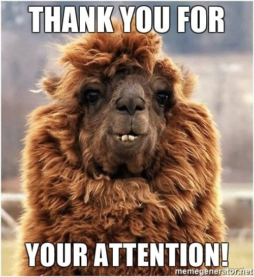 Thank you for your Attention! - alpaca thanks you | Meme Generator