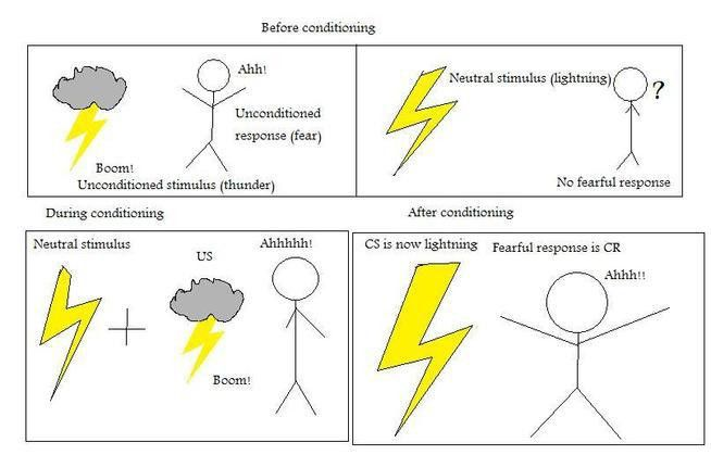 APPsychTextbk - Classical Conditioning