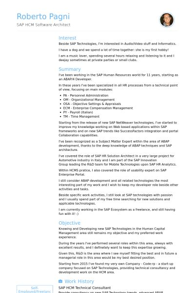 Technical Consultant Resume samples - VisualCV resume samples database