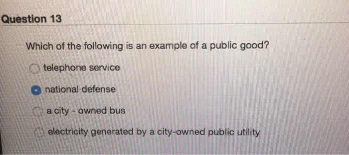 Question 13 Which Of The Following Is An Example O... | Chegg.com