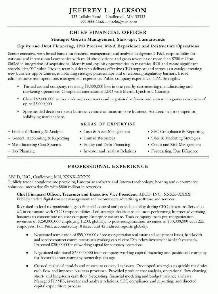 mis vice president resume example of mis internship resume
