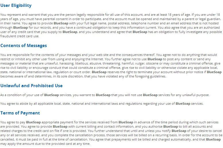 BlueSoap Terms of Service Agreement