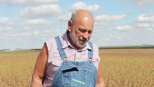Narrow band of hail pelts crops, causing significant loss | The Globe