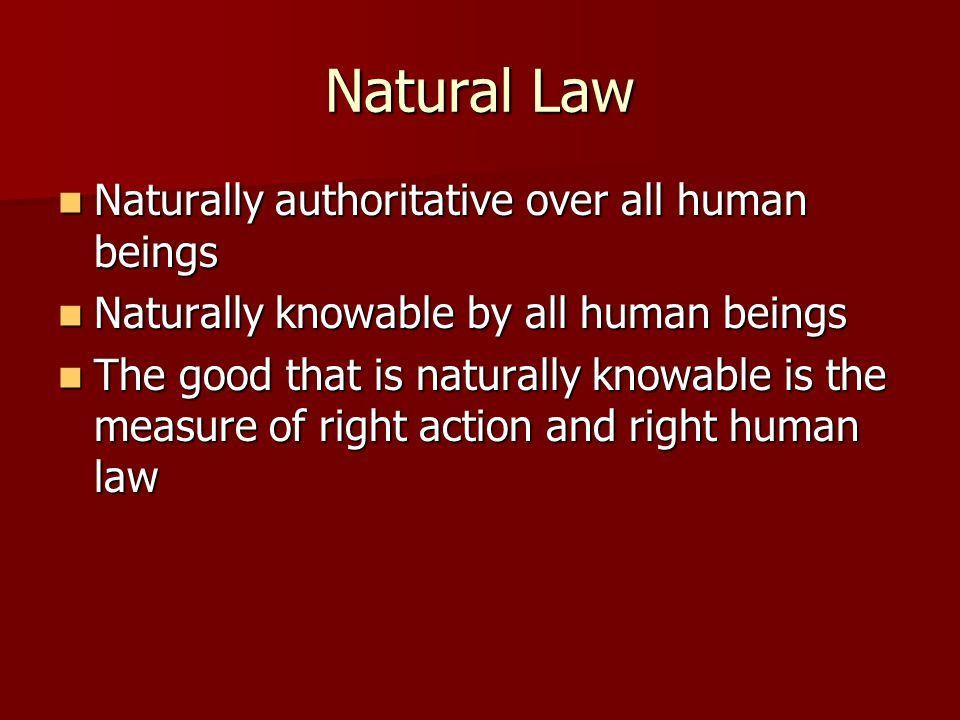 Natural Law Tradition and Human Rights. Project Updates Revised ...