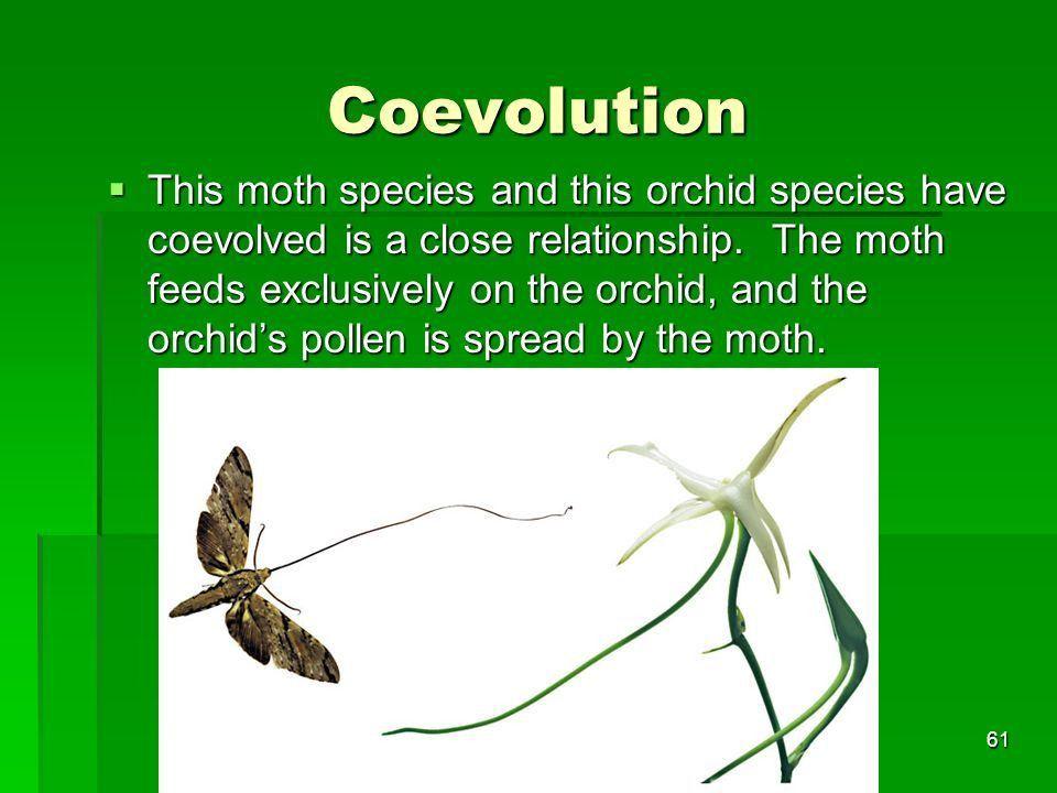 Evolution Evolution Chapter 16.1, 16.2, and ppt download