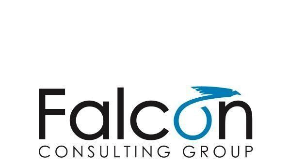Avaap Acquires Epic-Focused Consulting Firm Falcon Consulting