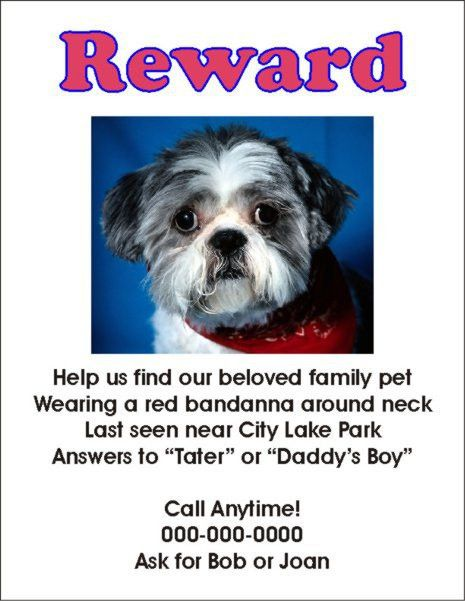 Missing Pet Flyer Template. 20 nice lost pet flyer templates ...