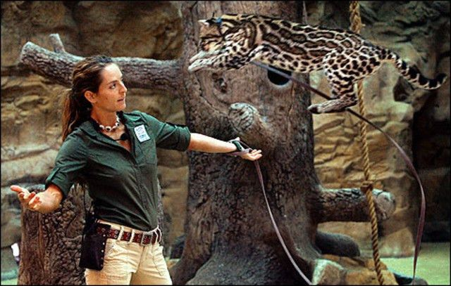 My Life So Far: Cindy Hall, zookeeper