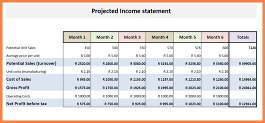 9+ projected income statement template | Statement Synonym