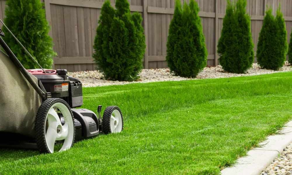 Lawn Care Business Reviews Archives - The Lawn Solutions