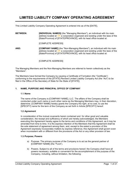 LLC Operating Agreement - Template & Sample Form | Biztree.com