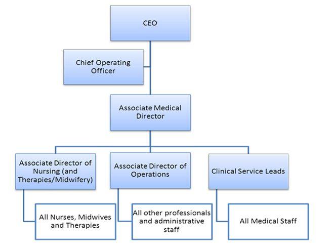 The Princess Alexandra Hospital Jobs - Job description