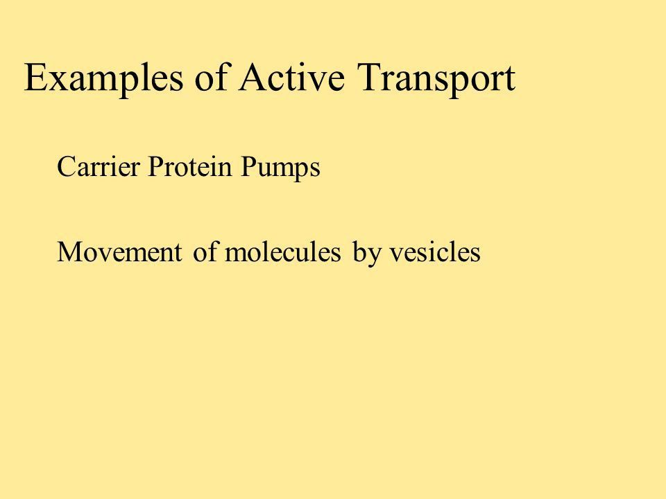 Cellular Transport Molecules moving across the cell membrane Cell ...