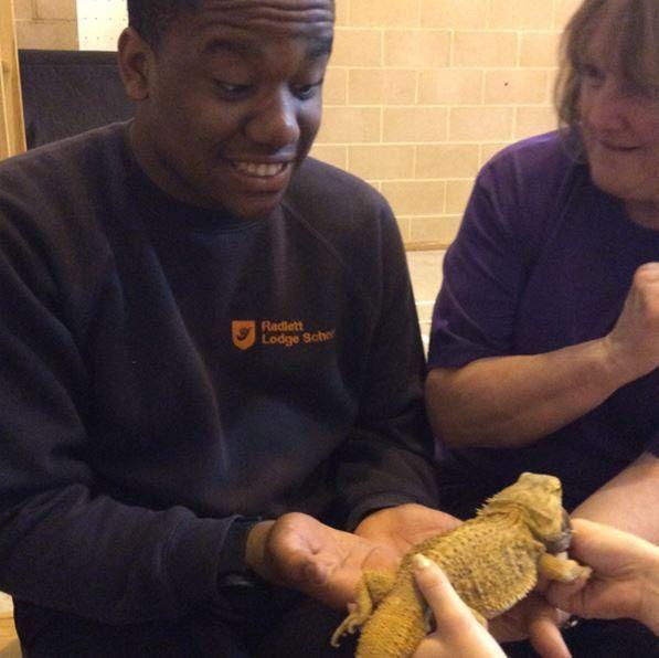 "Nat Autistic Society on Twitter: ""Our Radlett Lodge School enjoyed ..."