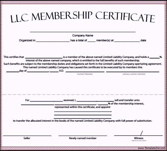 LLC Membership Certificate Template | TemplateZet