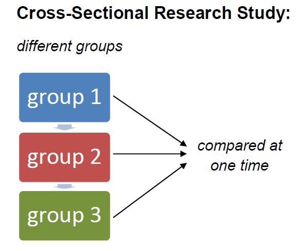 Cross-Sectional Research: Definition & Examples - Video & Lesson ...