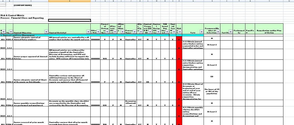 Internal Controls Template Snapshots