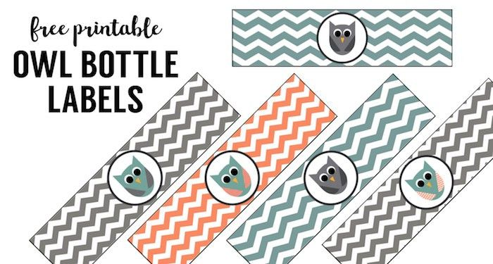Free Printable Owl Water Bottle Labels - Paper Trail Design
