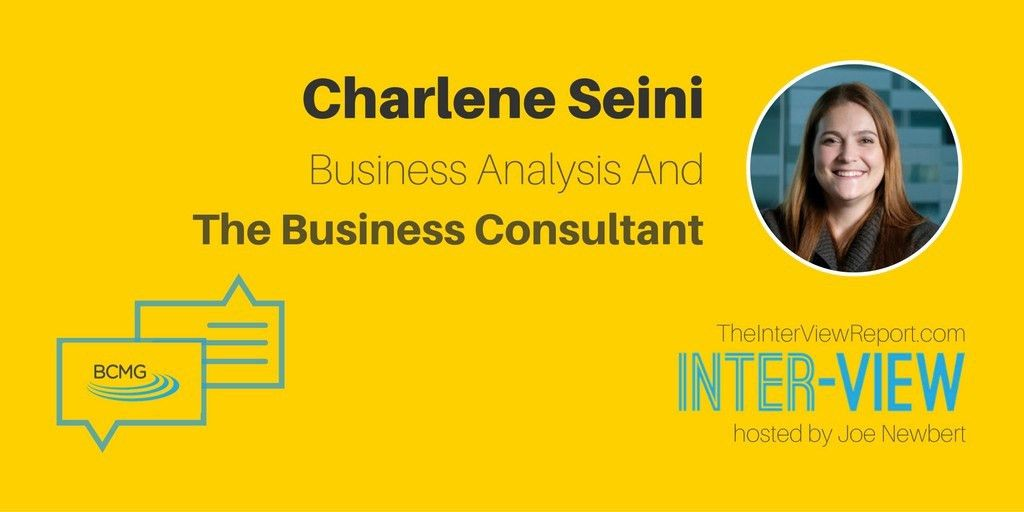 Business Analysis And The Business Consultant