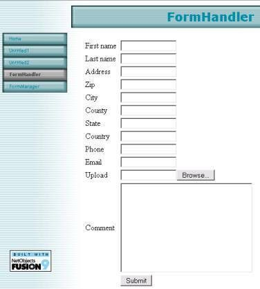 Collecting Information from Users with a Form