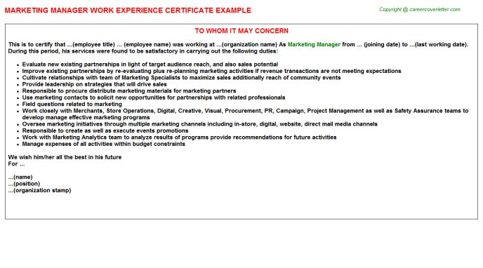 Marketing Manager Work Experience Certificate