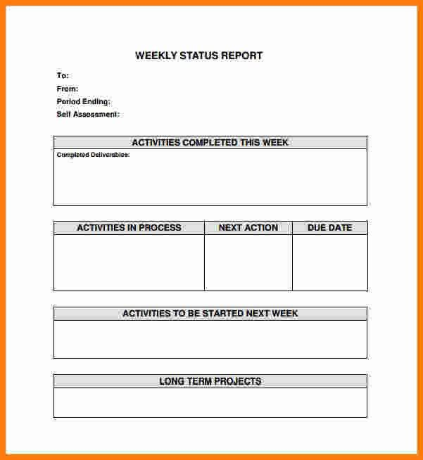 12+ simple activity progress report template | ledger paper