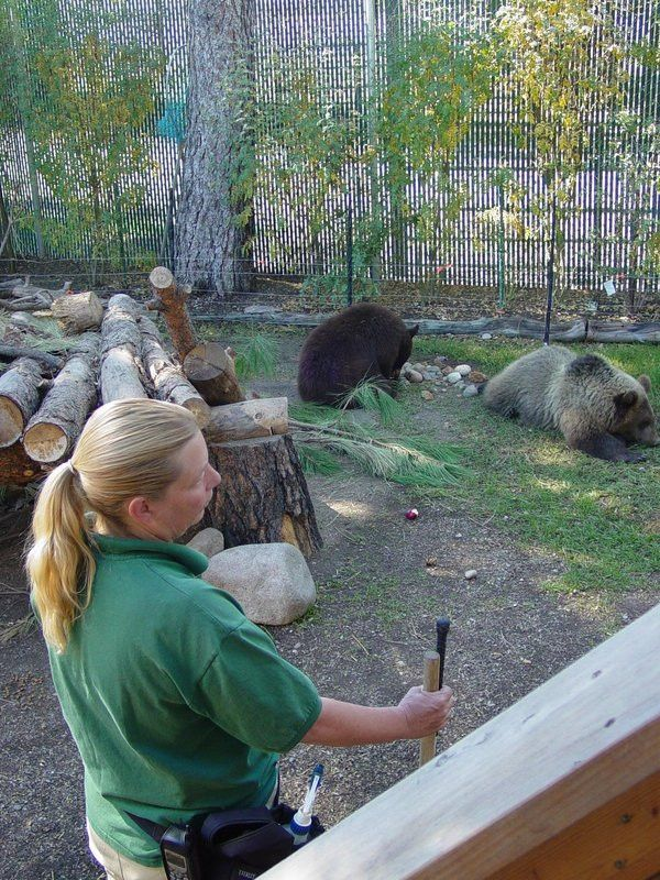 Attendance and Grading - Cat Tales Zoological Training Center