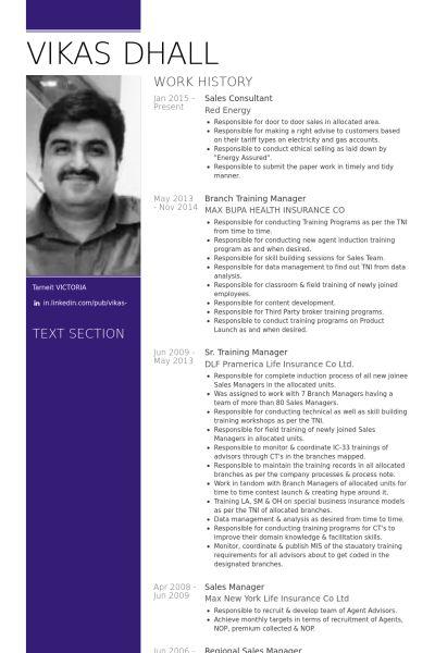 Sales Consultant Resume samples - VisualCV resume samples database