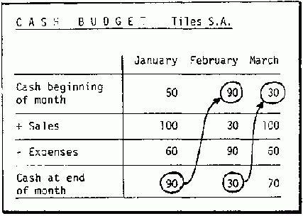 The cash budget