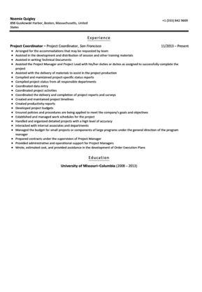 project coordinator resume examples download project coordinator