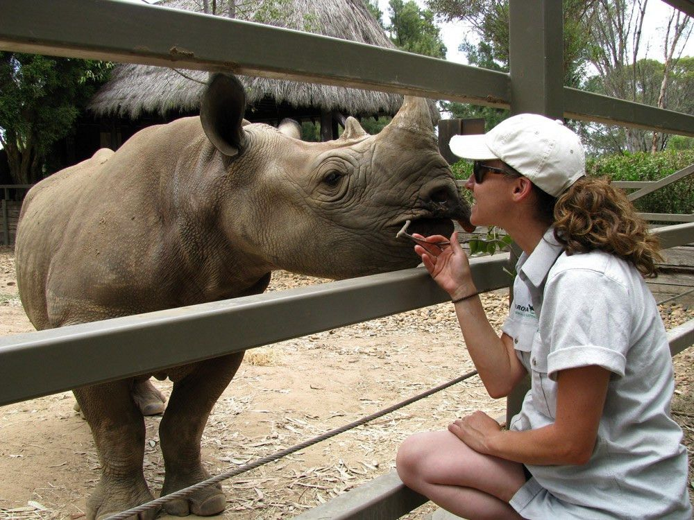 Tag Archives: zoo keeper
