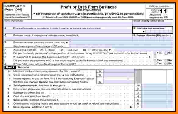 7+ profit and loss statement self employed | Case Statement 2017